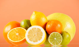 Citrus collection. On the table Stock Photography