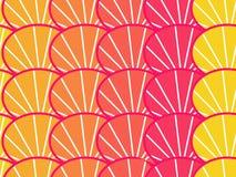 Citrus color Stock Images