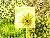 Citrus color collage Royalty Free Stock Photo