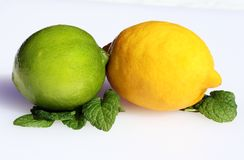Citrus combination. A lemon and lime resting on leaves royalty free stock images
