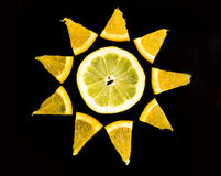Citrus composition. Isolated on black background Royalty Free Stock Photography