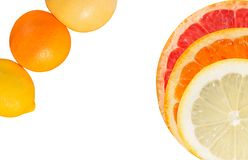 Citrus composition. Composition of whole and sliced citrus fruit.Orange,lemon and grapefruit detail in a white backgroung Stock Images