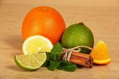 Citrus, connected sticks of cinnamon and mint Stock Image