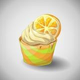 Citrus cupcake. Set of capkakes. Hand draw. Citrus cupcake. Vector illustration Stock Photography