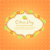 Citrus day. Card in orange or citrus theme. eps 10 file, with no gradient meshes,blends,opacity, stroke path,brushes.Also all elements grouped and layered vector illustration