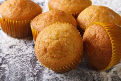 Citrus delicious muffins macro, on floured table top view Royalty Free Stock Photo