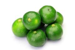 Free Citrus Depressa Royalty Free Stock Photo - 26590275