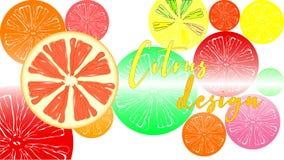 Citrus design vektor illustrationer