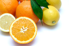 Citrus Details II. Lemons and Oranges on white background Royalty Free Stock Image