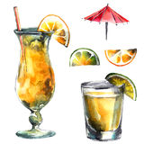 Citrus drinks. Watercolor hand drawn illustration of cocktail and citrus fruits royalty free illustration