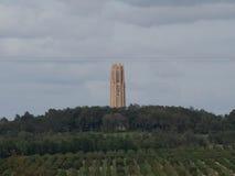 Citrus dunge med det Bok tornet royaltyfri bild
