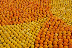 Citrus Exhibition at the Lemon Festival of Menton Royalty Free Stock Photo
