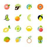 Citrus family - lemon, orange, lime, tangerine. Grapefruit. Vector logo templates set. Elements for design stock illustration