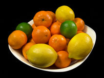 Citrus feuids Royalty Free Stock Image