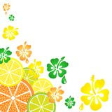 Citrus_and_flowers_pattern stock illustration
