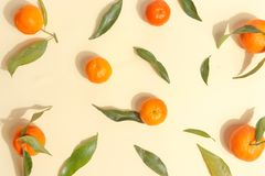 Citrus food on ligth-yellow background - assorted citrus fruits with mint leaves. Top view. Mix lemon orange whole organic lime slice cut half cross collection royalty free stock images
