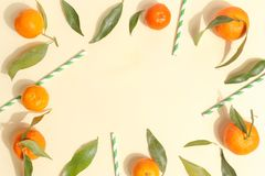 Citrus food on ligth-yellow background - assorted citrus fruits with mint leaves. Top view. Mix lemon orange whole organic lime slice cut half cross collection stock images