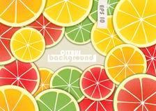Citrus frame Stock Image