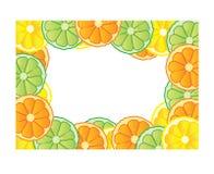 Citrus frame. Illustration of the frame made of fresh fruits, lemon, orange and lime royalty free illustration