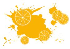Citrus_frame Royalty-vrije Illustratie