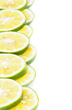 Citrus Frame Royalty Free Stock Images