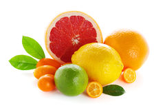 Citrus fresh fruit on white background Royalty Free Stock Photos