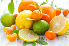 Free Citrus Fresh Fruits Royalty Free Stock Images - 16955229