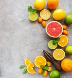 Citrus fresh fruits. On a concrete background royalty free stock images