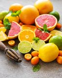 Citrus fresh fruits. On a concrete background royalty free stock photography