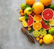 Citrus fresh fruits. On a concrete background royalty free stock photos