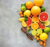 Citrus fresh fruits. On a concrete background stock photo