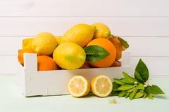 Citrus fresh fruits Royalty Free Stock Image