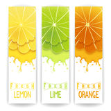 Citrus fresh juice Royalty Free Stock Photos