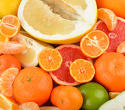 Citrus Royalty Free Stock Photography