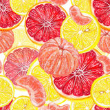Citrus freshness. Watercolor seamless pattern of citrus fruits stock illustration