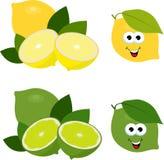 citrus fruit Φρέσκοι λεμόνι και ασβέστης, συλλογή των απεικονίσεων ράστερ Σύνολο και ασβέστη και λεμονιών περικοπών φρούτα που απ ελεύθερη απεικόνιση δικαιώματος