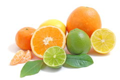 Citrus fruit Royalty Free Stock Image