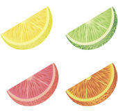 Citrus fruit Stock Photos