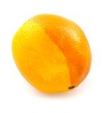 Citrus fruit. Stock Photography