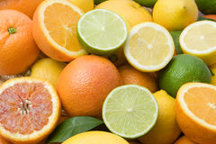 Citrus fruit. Lemon, lime, tangerine, orange  and grapefruit background Stock Photos