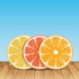 citrus fruit ελεύθερη απεικόνιση δικαιώματος