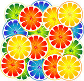 Citrus Fruit Stock Images