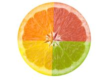 Citrus Fruit. This is a composite shot of four different citrus fruit stock photos
