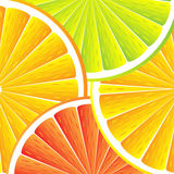 Citrus fruit background. Citrus background with slices of lemon, grapefruit and orange Stock Photos