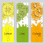 Citrus fruit banners Stock Images