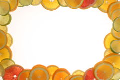 Citrus fruit border Stock Images