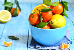 Citrus fruit in a bowl. Stock Images