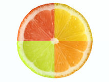 Citrus fruit, clipping path Royalty Free Stock Image