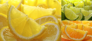 Citrus fruit collection stock images