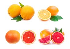 Citrus fruit collection. Orange, grapefruit oh white Stock Photo